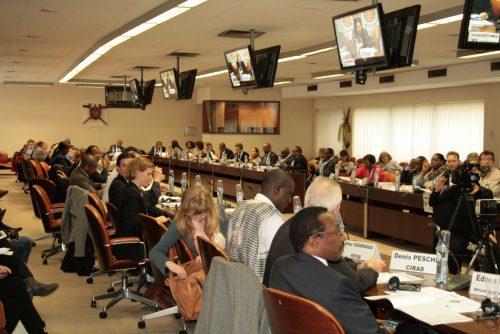 Brussels Briefing 48
